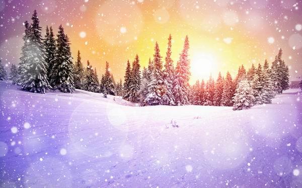 обои зимой: