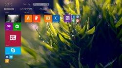 Microsoft назначила выход Windows 8.2 на январь 2014