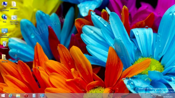 Amazing Flower Colors - ����� ��������� ���� ��� Windows 8