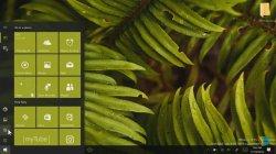 Creators Update Windows 10 на видео, новая сборка 14971